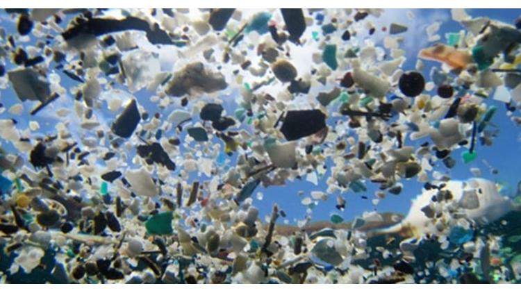 The Plastic Plague: Practical Ways to Make a Difference